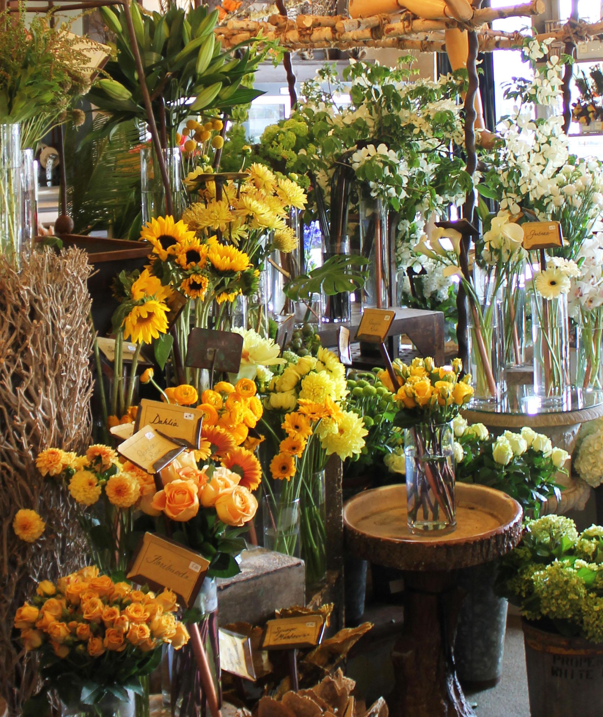 Arenas » Flowers