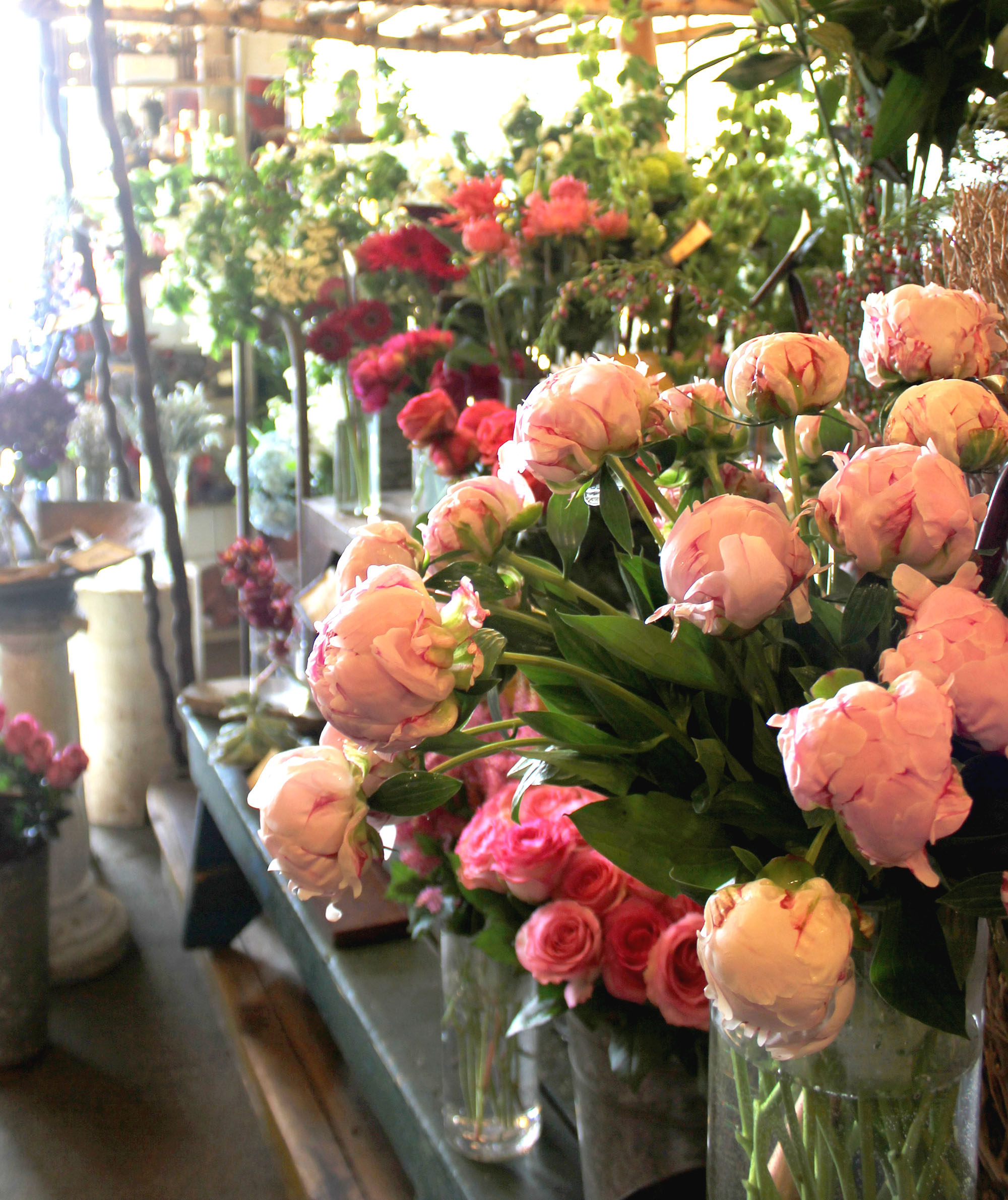 Arenas flowers around the globe or grown for arenas to provide remarkable color fragrance and longevity from this market the talented design team cultivates and izmirmasajfo